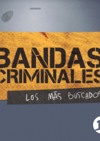 Bandas criminales (Chile)