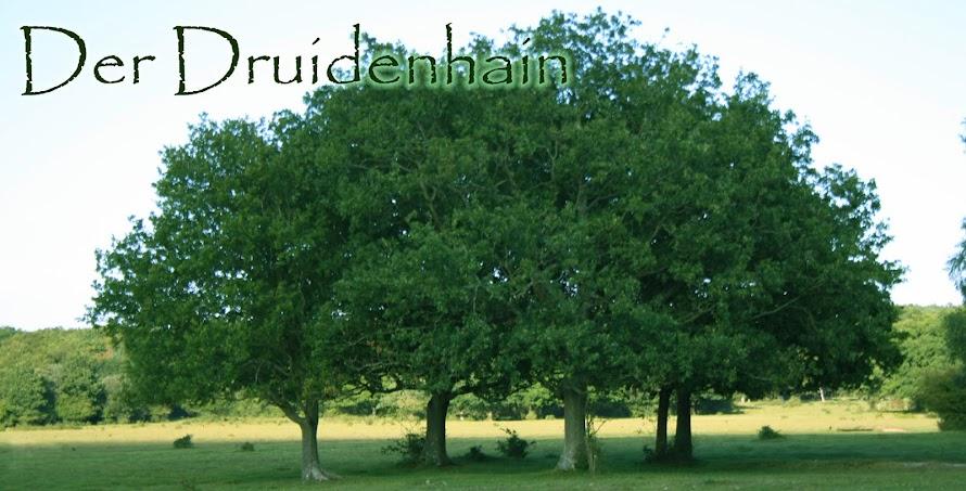 der Druidenhain
