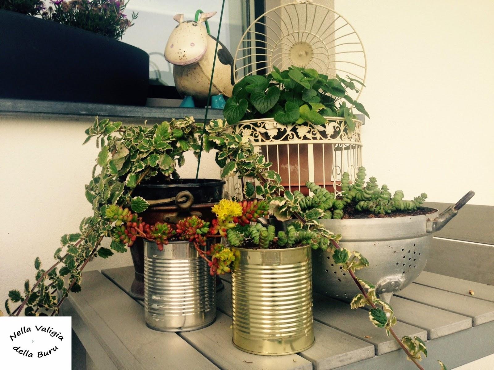 Nella valigia della buru giardino e balcone realizzare for Vasi fai da te