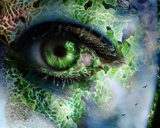 Fractal Eye | Art Wallpaper