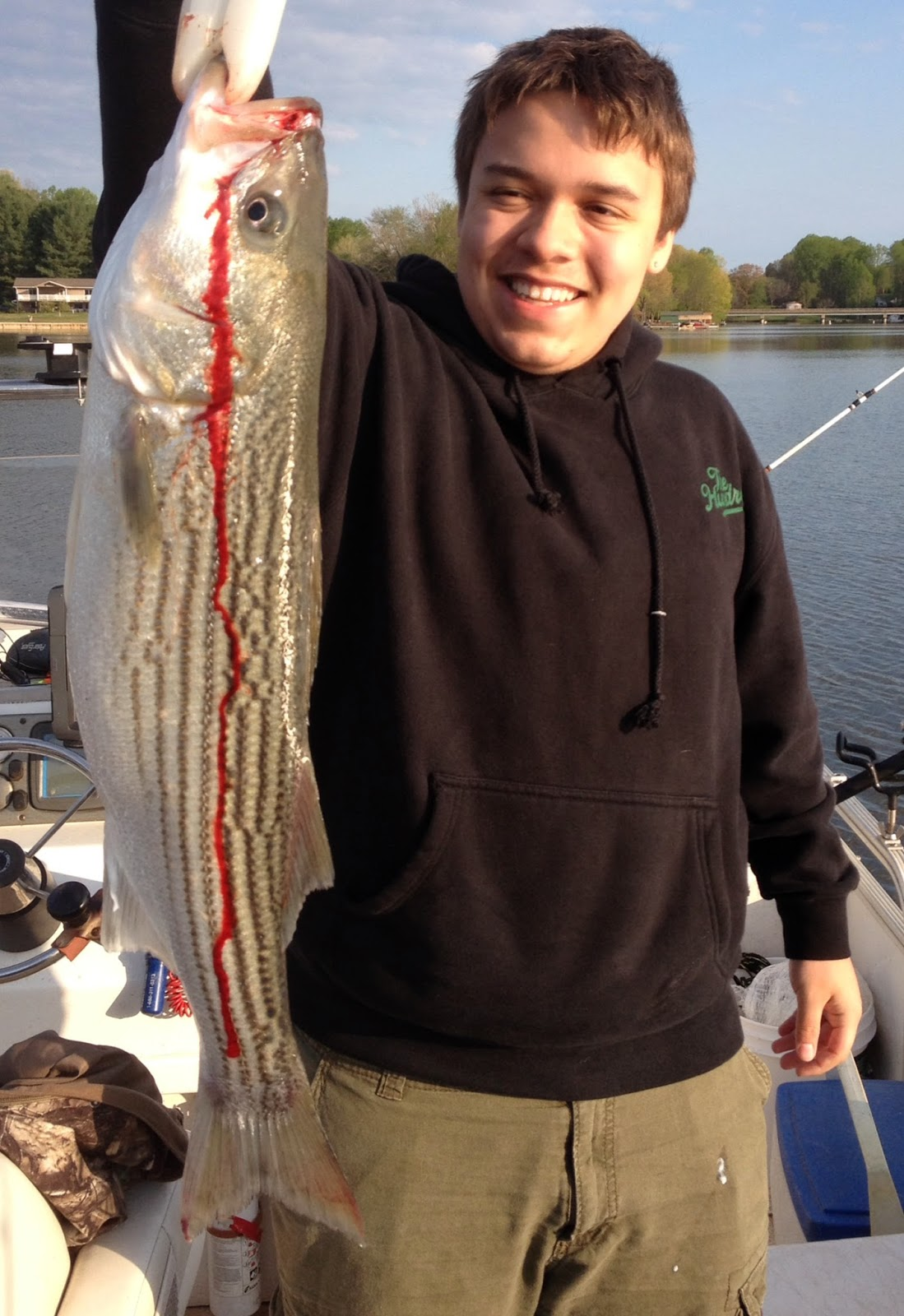 Striper report a beautiful lake anna morning jim hemby for Lake anna fishing report