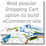 65 best Popular Shopping Cart option to build your eCommerce website