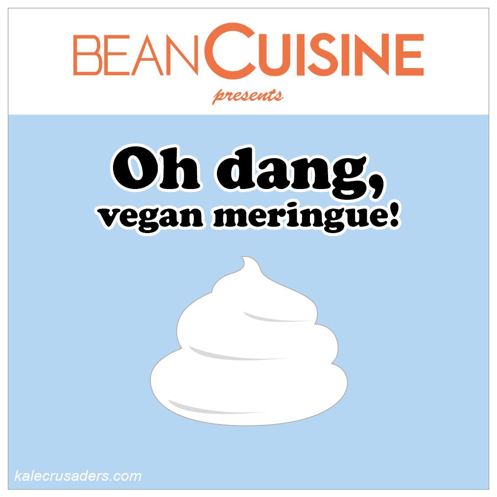 Bean Cuisine; Oh dang, vegan meringue; Vegan Meringue; Chickpea brine egg white substitute; Chickpea brine meringues; Bean brine egg white substitute; Bean brine meringues; egg-free meringues
