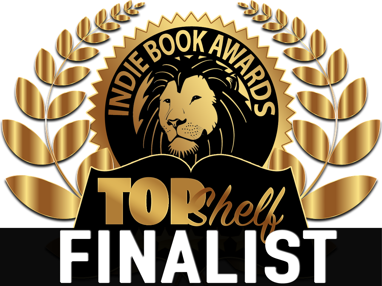 2019 Top Shelf Indie Book Award Finalist