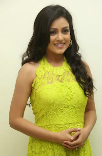 Actress Mishti Chakraborty Picture Gallery in Long Dress at Chinnadana Nee Kosam Audio Launch  30.jpg