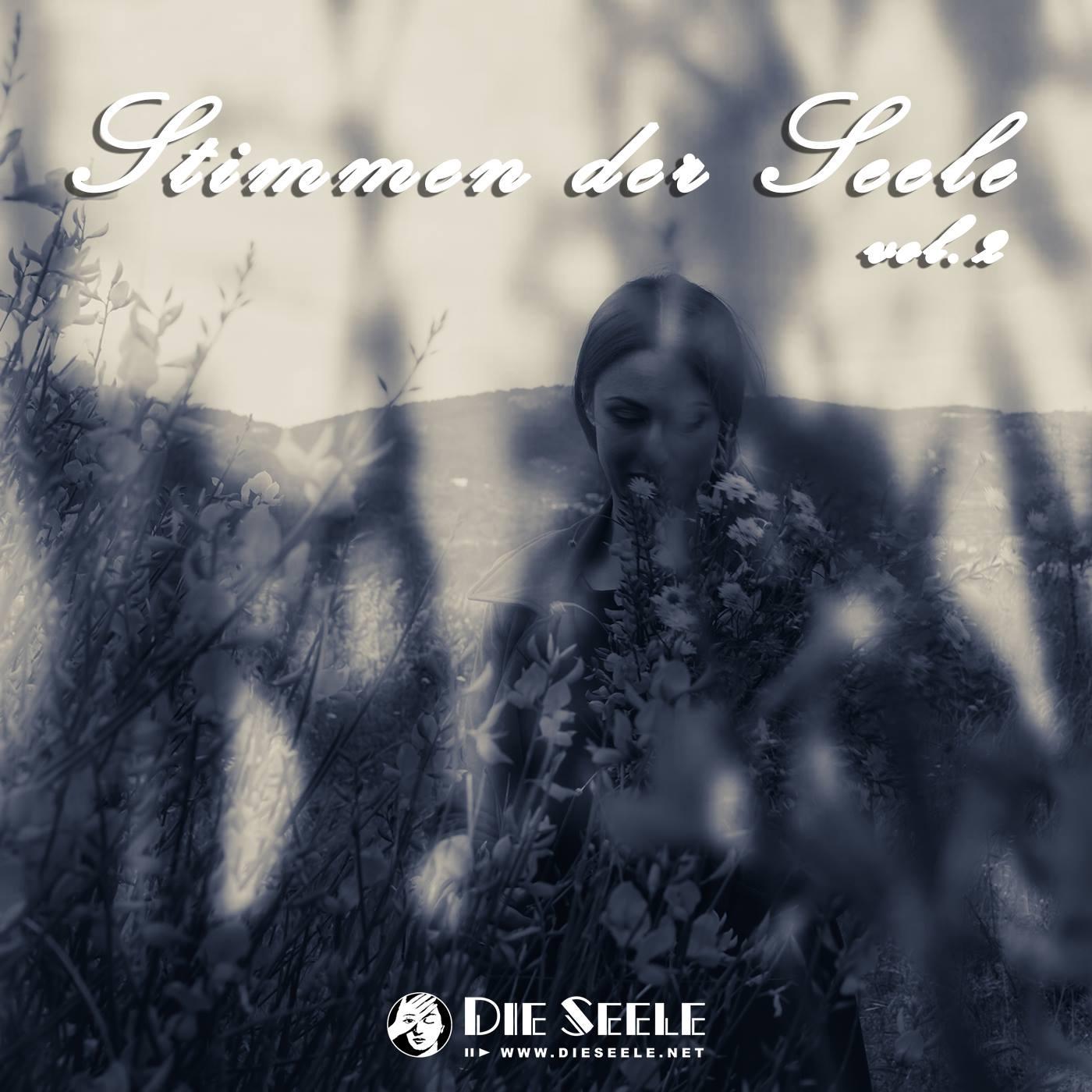 Stimmen Der Seele 2