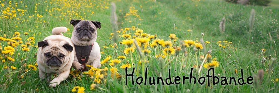 Holunderhof-Bande