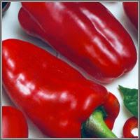 Сладкий перец сорт «Теща любезная»