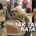 MEMALUKAN!!! Kejadian berlaku di KSL City Mall Johor Bahru, 3 foto pasangan ini selamba bersetubuh di kawasan awam !!!