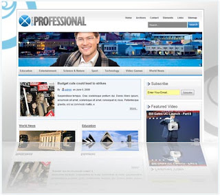 How To Choose A Professional Looking Template For Your Brand New Blog