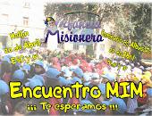 Fotos del Encuentro MIM 2013