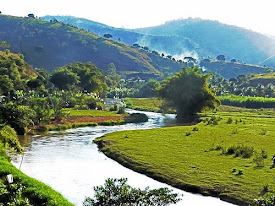 Salvar Minas Gerais (Brasil)