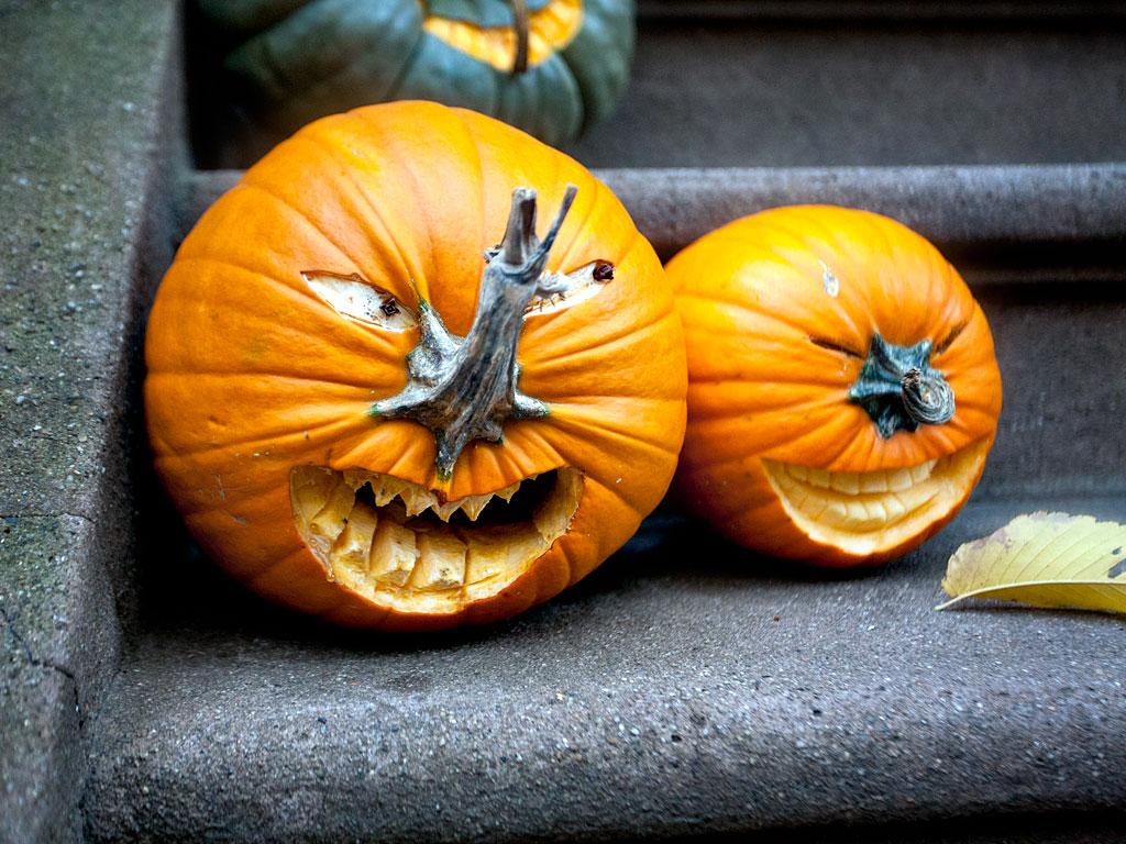 Pumpkins parade at british museum the london aye
