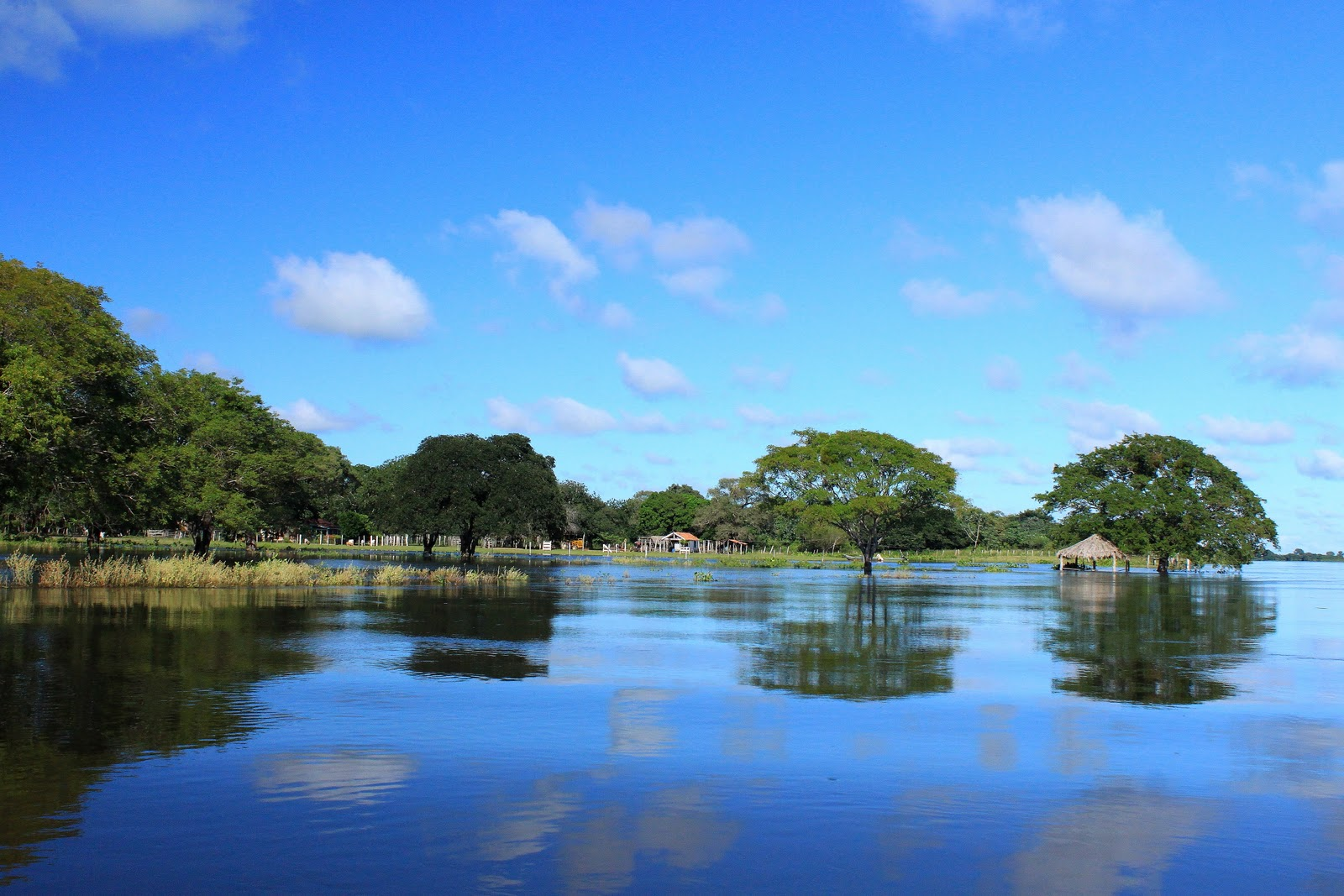 Fotos do aviao da pantanal
