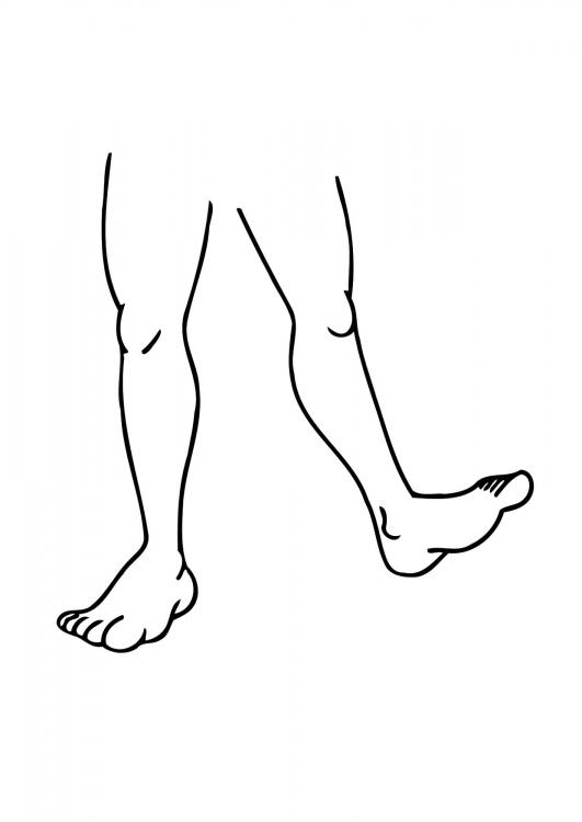 Взрывная сила ног