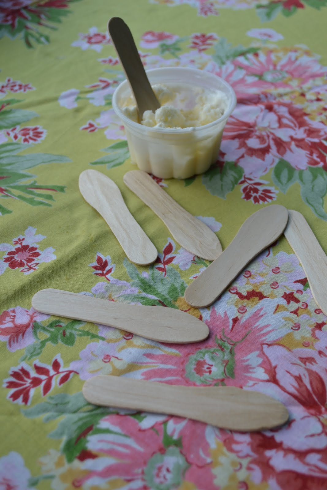 Old Fashioned Wooden Ice Cream Spoons