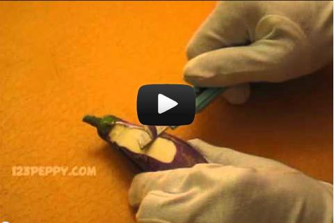 Поделки видео из овощей