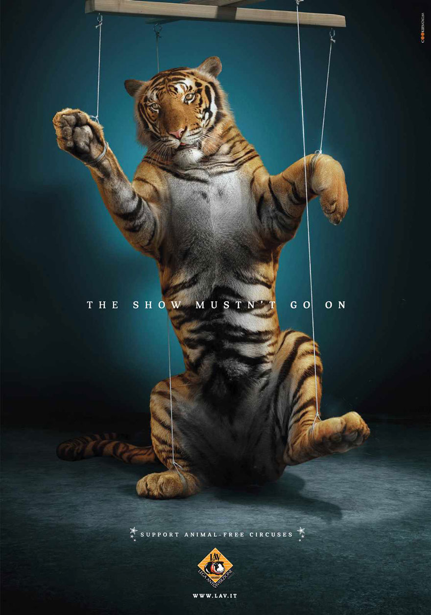 LAV: The Show Mustn't Go On. Support Animal-free Circuses