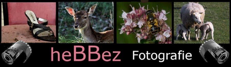 heBBez Fotografie