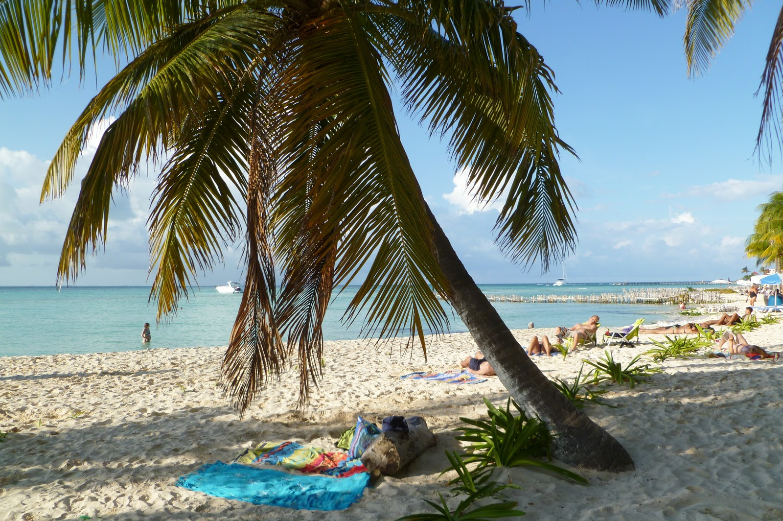 life 39 s a beach favorite beach shots. Black Bedroom Furniture Sets. Home Design Ideas