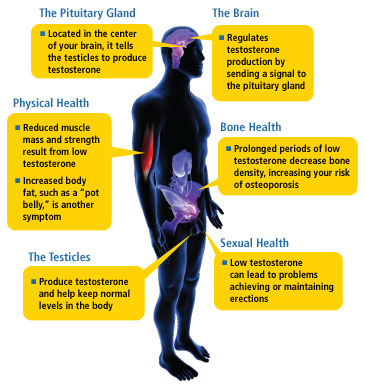 Low Testosterone Symptoms Depression