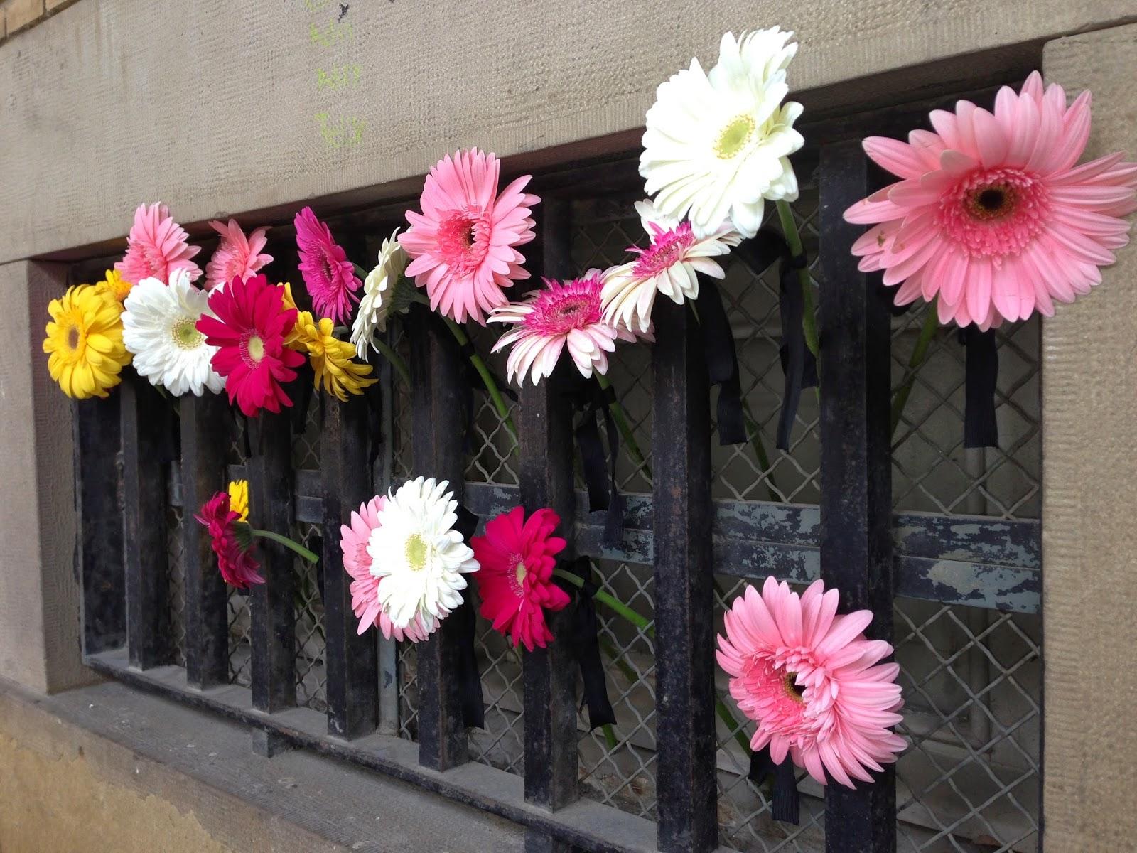 Imagenes De Flores Para Luto - Foto Gratis: Flores, Rosas, Blanco, Luto, Noble Imagen