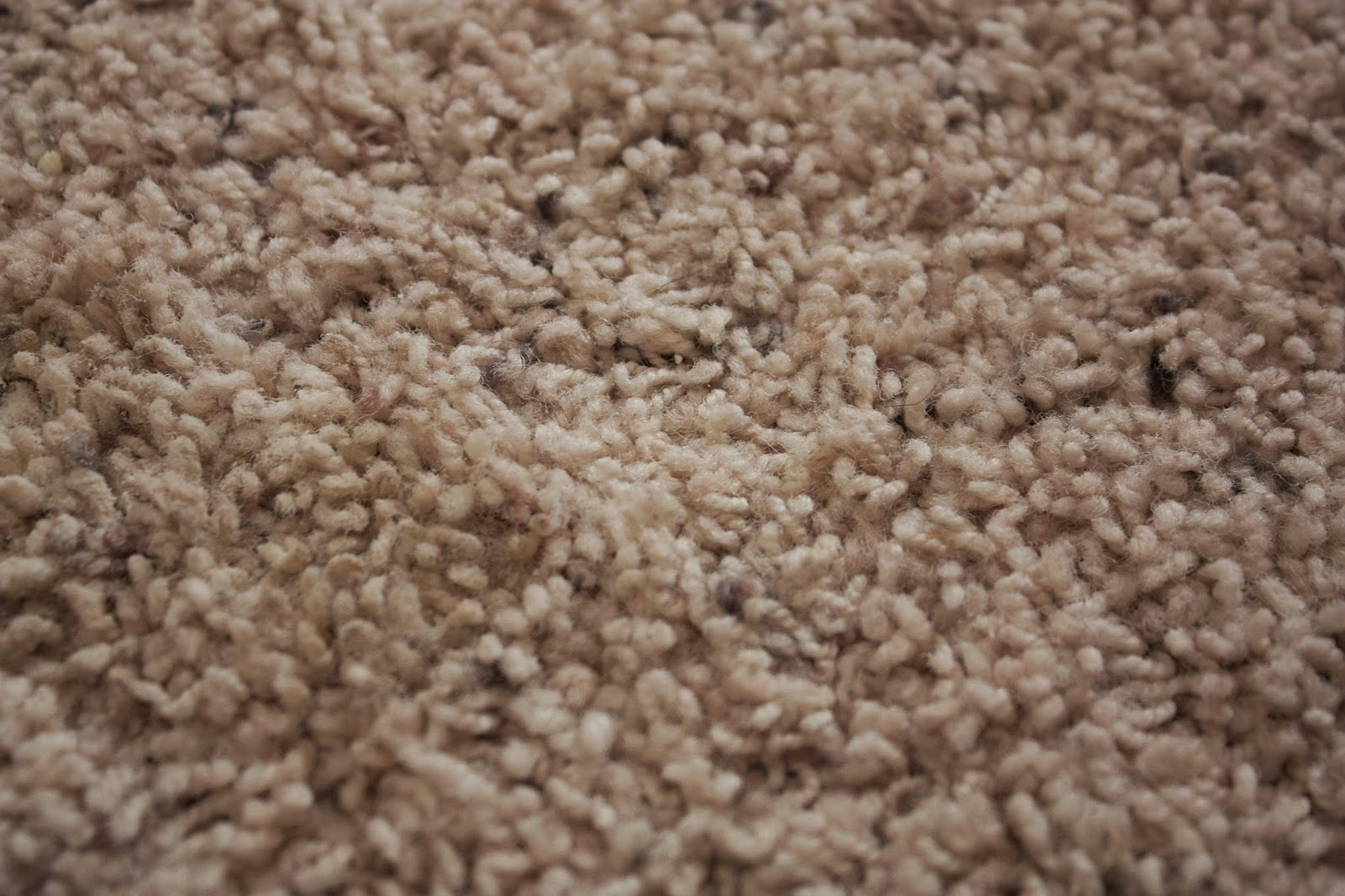 Simple Stitches By Shannon Amazing Carpet Cleaner