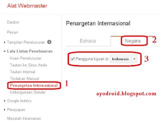 cara Setting Target Pembaca di google webmaster tools