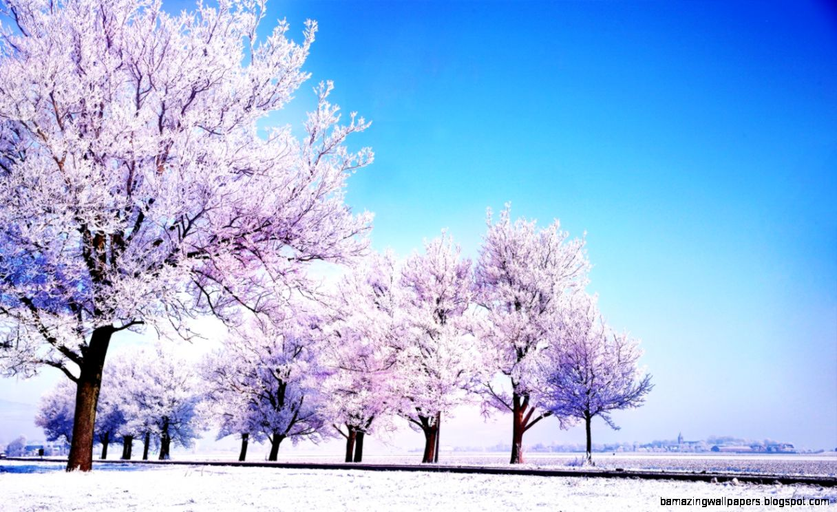 Winter Background HD desktop wallpaper  High Definition