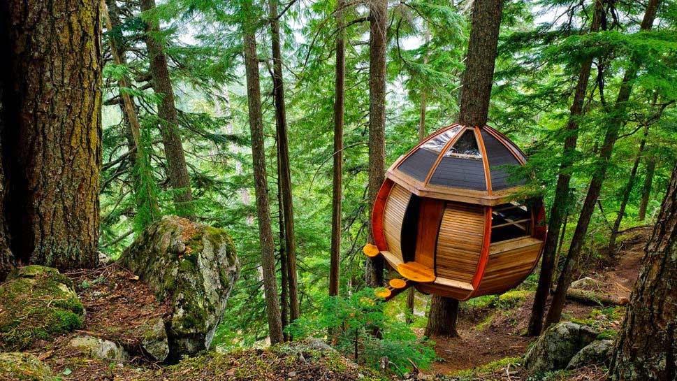 beautiful-natural-home-made-by-human