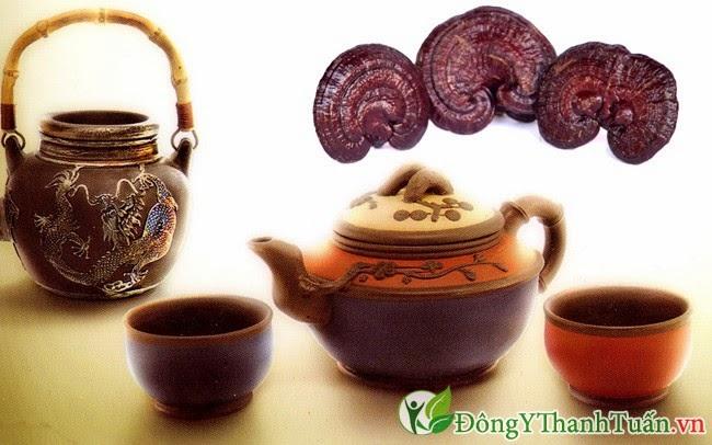 Nấm linh chi là thuốc mát gan giải độc trị mụn