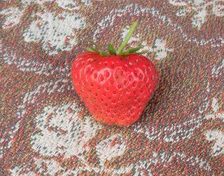 первая ягодка сорта Лорд