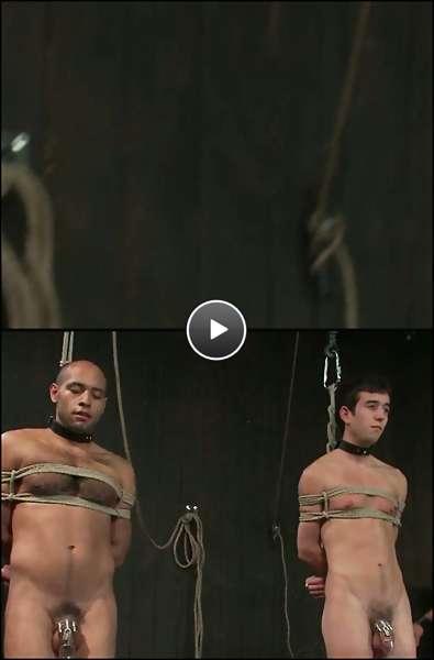 free man photo video
