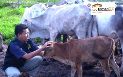 Layanan Kurban di Palembang