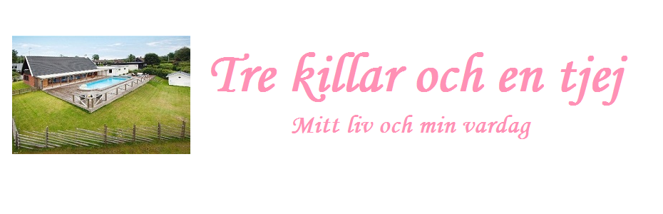 tre killar &amp; en tjej