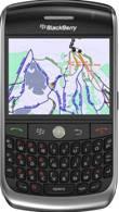 Aplikasi GPS Blackberry Terbaik