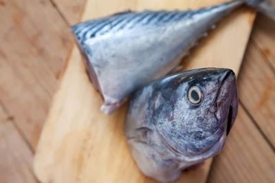 سمك التونة مرتفع في ب6 ، وب 12 والتي هي المصدر الرئيسي ضد الإجهاد