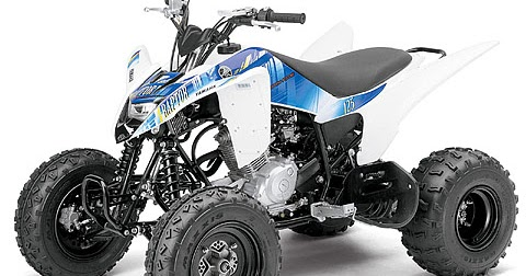 2013 yamaha raptor 125 atv pictures specifications. Black Bedroom Furniture Sets. Home Design Ideas