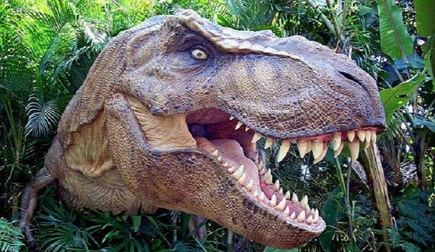 Νέα ενδιαφέρουσα μελέτη για τον βασιλιά των δεινοσαύρων