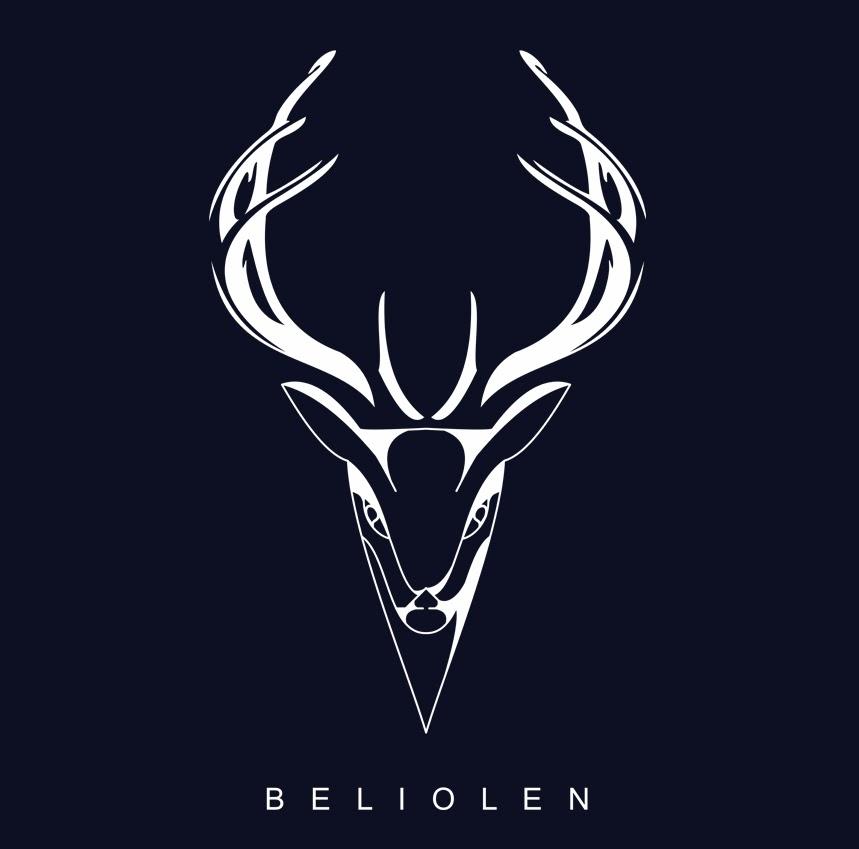 Скоро начинает работу сайт beliolen.by ДС Белый олень! | ДИЗАЙН ...
