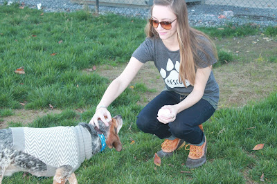 Fur & Collar Rescue T-shirt