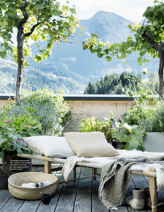 Backyard with plants. Image by Christine Bauer via Heimelig.