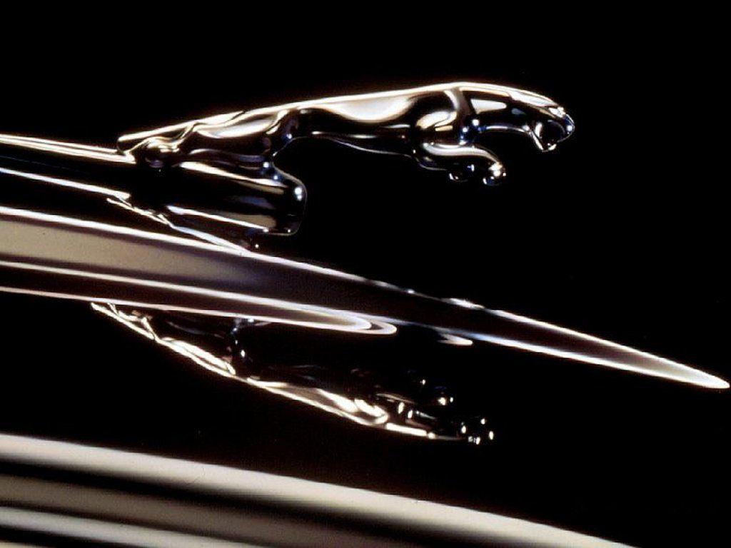 Hd wallpaper jaguar - Automotive Cars Wallpaper Hd Jaguar Logo