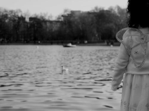 foto reflexion