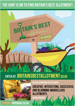 Britains best allotment 2015