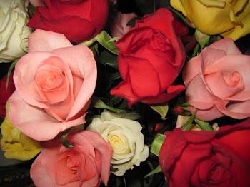 Miss Ella's Roses