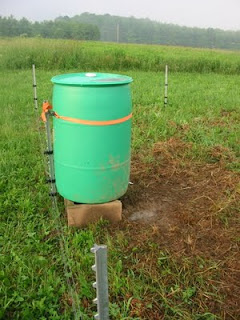 New Pig Watering System