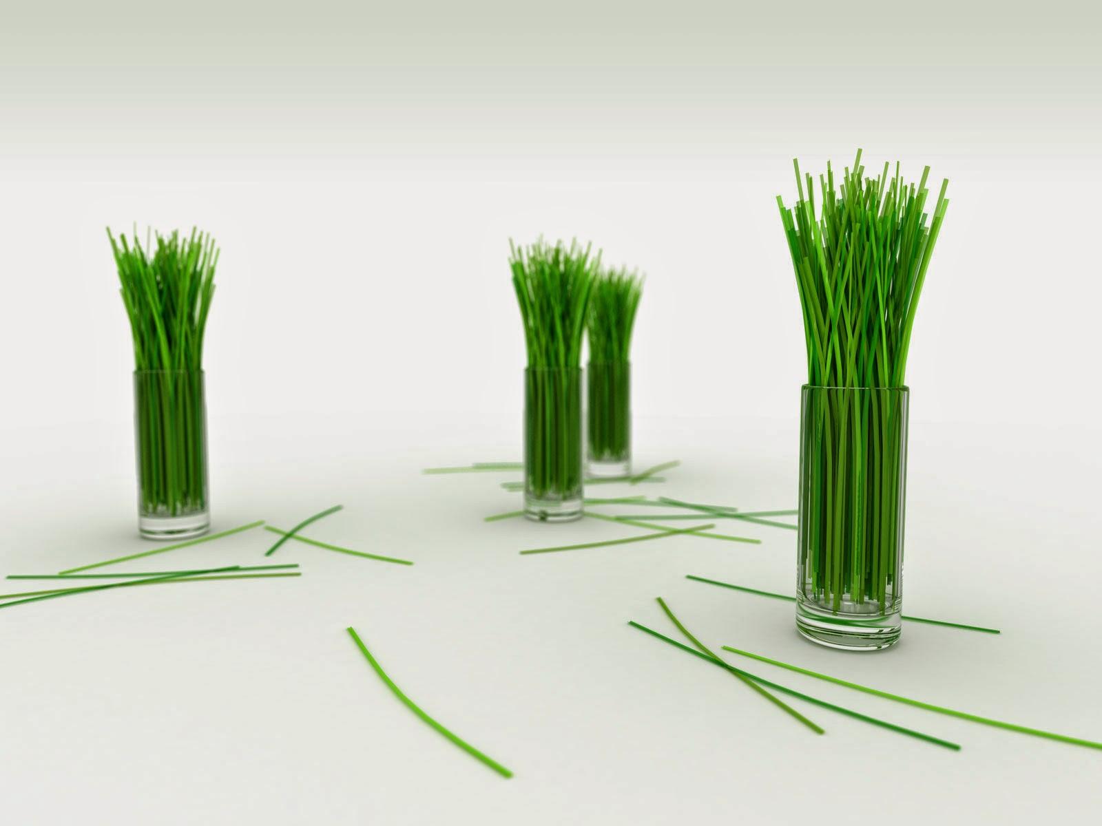 Abstrac Green Grass HD Wallpaper