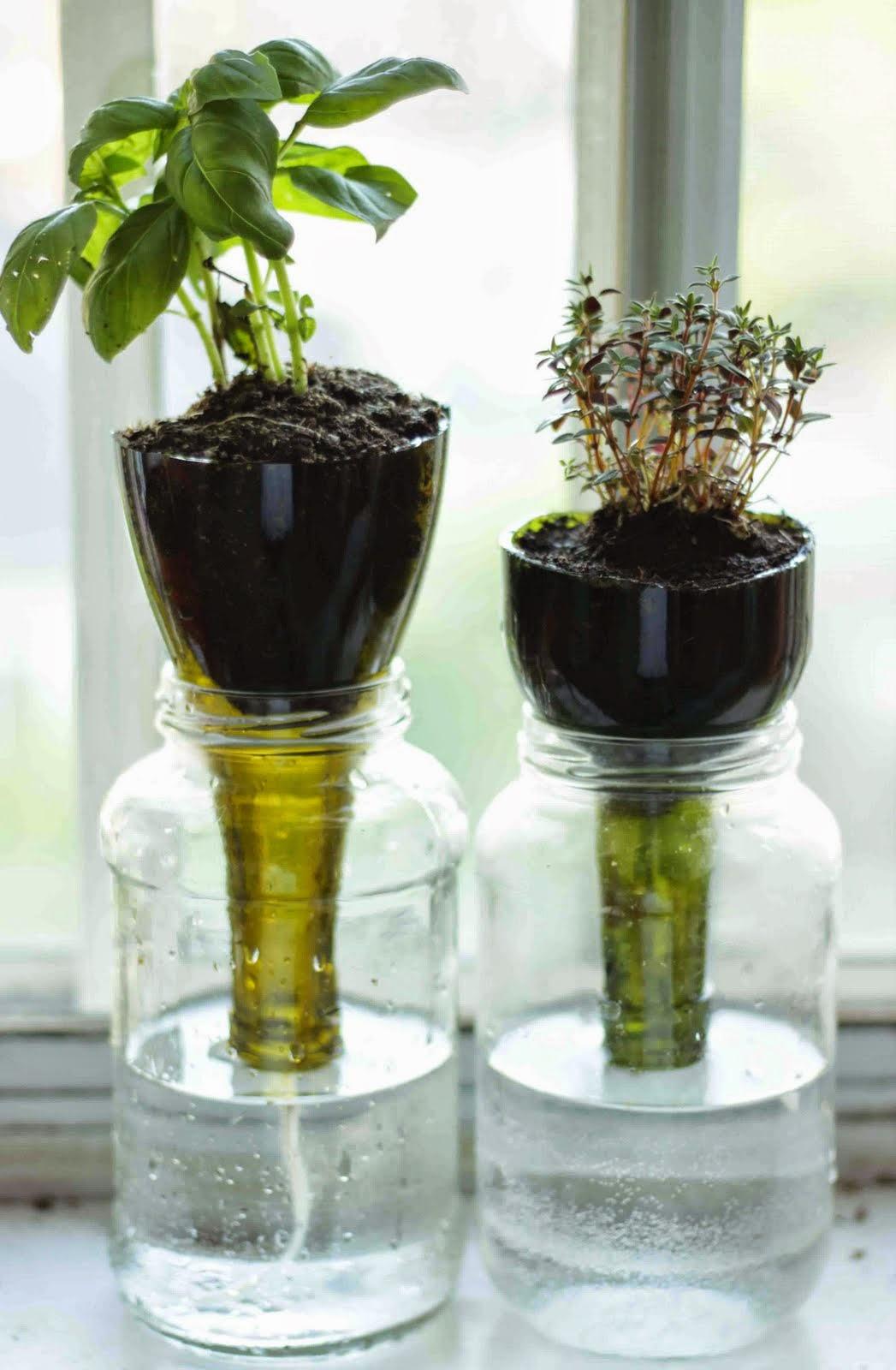 vaso-autoinnaffiante-fai-da-te-riciclare-una-bottiglia-di-plastica-diy-pot-bottle-selfwatering