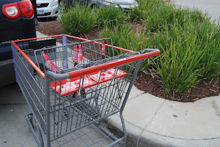 Two seat shopping cart